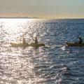 row into the light ziyi ouyang